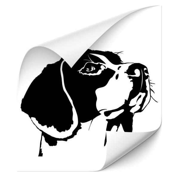 Beagle Heck Sticker - Hunde