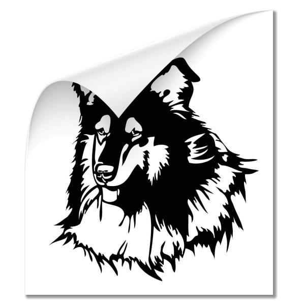 Collie Car Aufkleber - Hunde