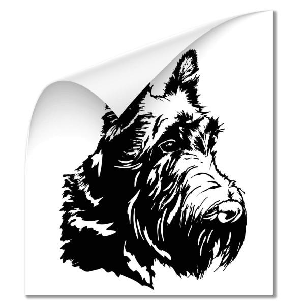 Scottish Terrier Hunde Heckaufkleber - Hunde