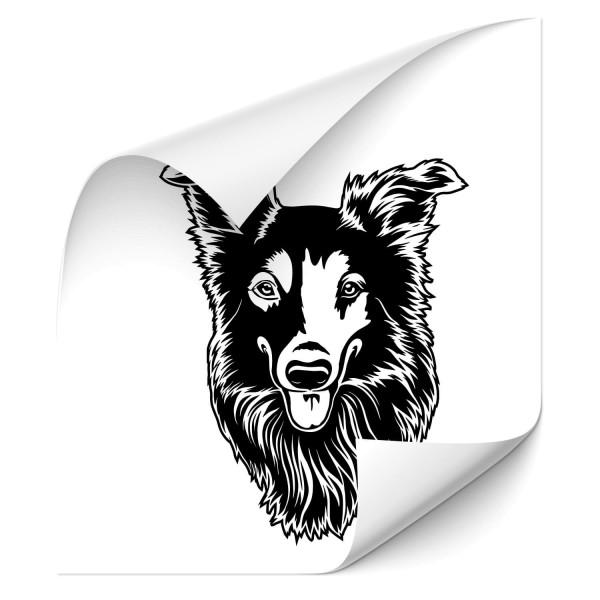 Australian Shepherd Heck Scheiben Aufkleber - Kategorie Shop