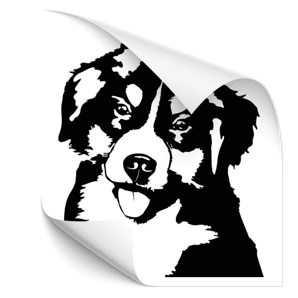 Berner Sennenhund Fahrzeug Aufkleber - Hunde