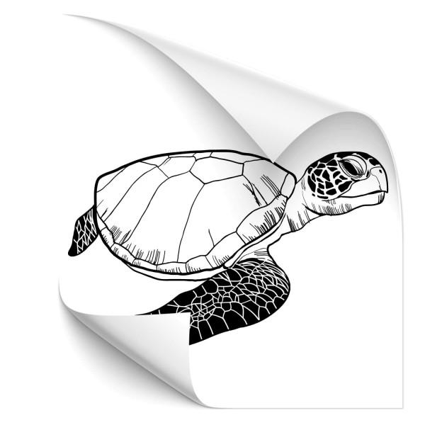 Meeresschildkröte Autosticker - unterwasserwelten