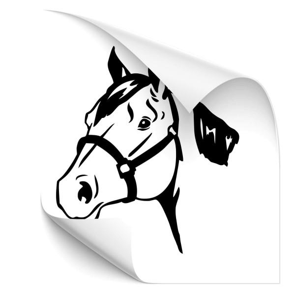 Pferde Car Tunig Aufkleber - Kategorie Shop