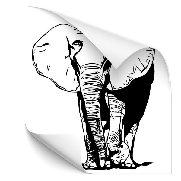 Elefant Motorhauben Aufkleber - Kategorie Shop