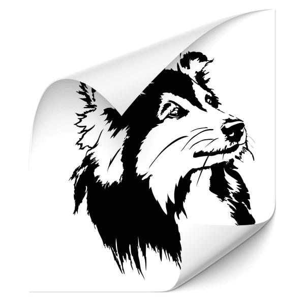 Shetland Sheepdog Heck Sticker - Hunde