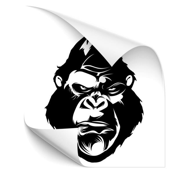 Gorilla Autotattoo - Kategorie Shop