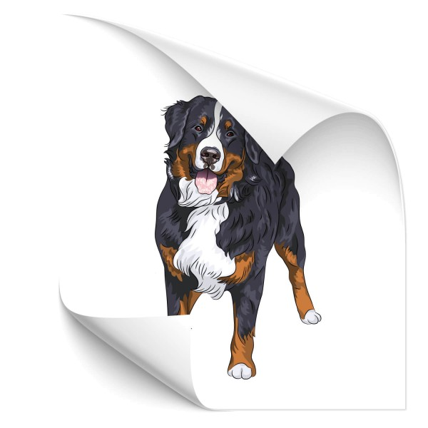 Berner Sennenhund Auto Folienaufkleber - Kategorie Shop