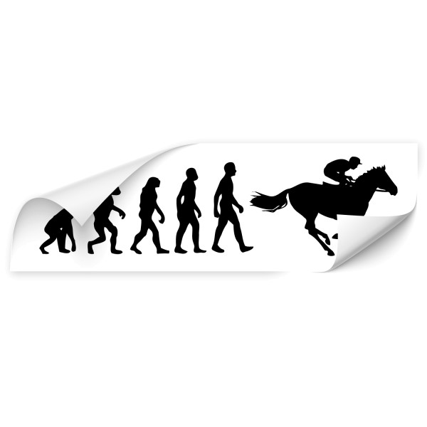 Evolution KfZ Aufkleber - Sport