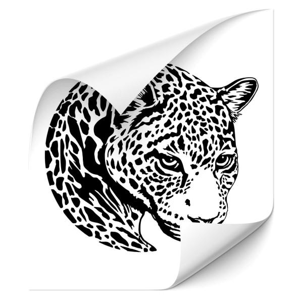 Leopard Autotattoo - tiere