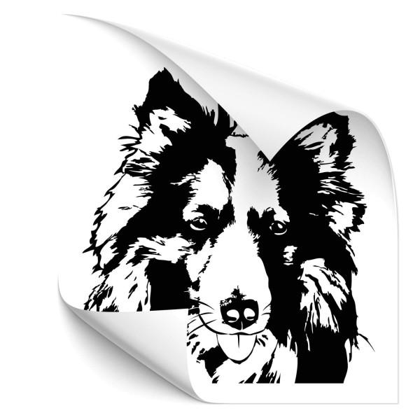 Collie Auto Heckscheibenaufkleber - Hunde