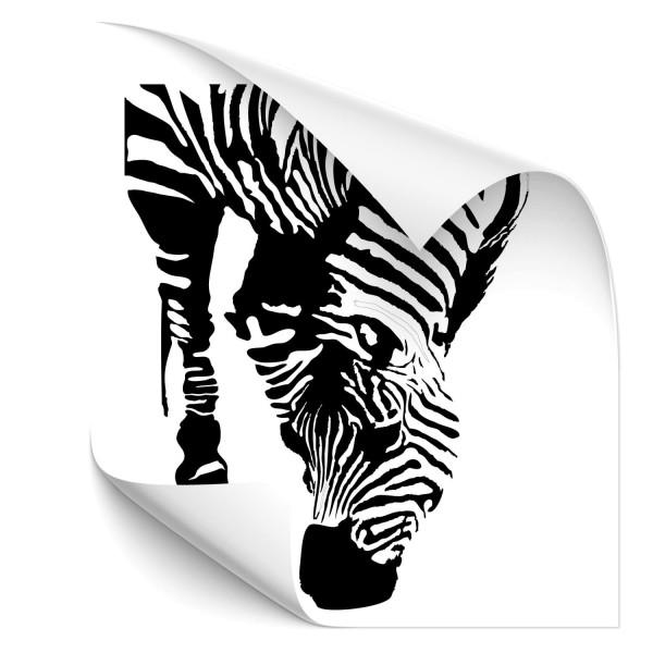 Zebra Car Tattoo - pferde & co