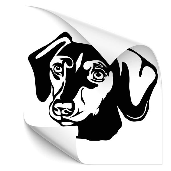 Dackel Fahrzeug Tattoo - Hunde