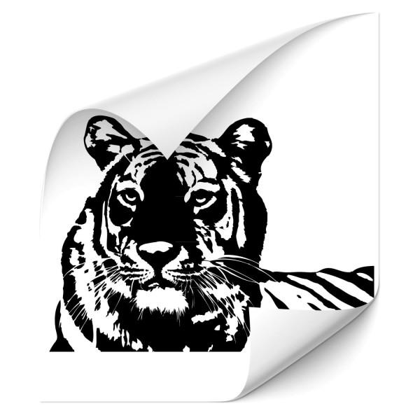 Tiger Autoaufkleber - katzen & Co