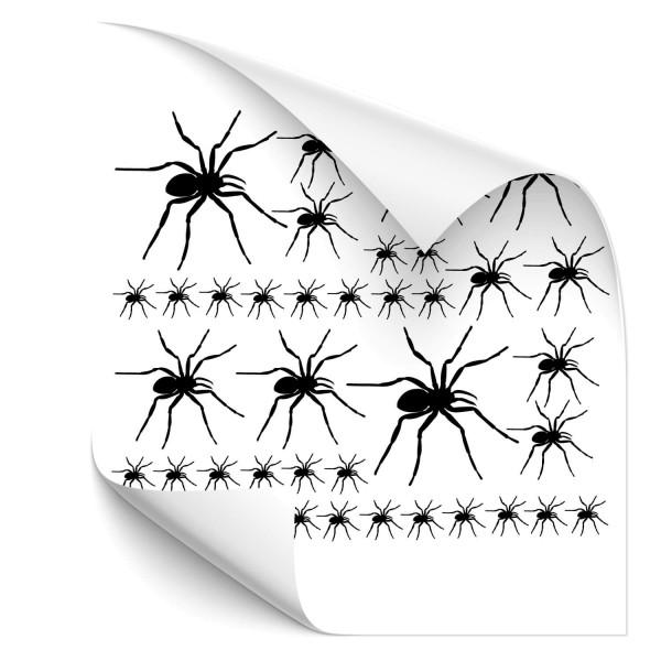 Spinnen-Set Kfz Foliensticker - wildnis