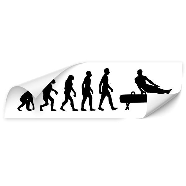 Evolution Fahrzeugaufkleber - Sport