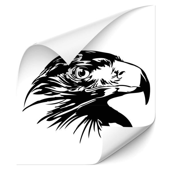 Adlerkopf Kfz Aufkleber - Adler & weitere Vögel