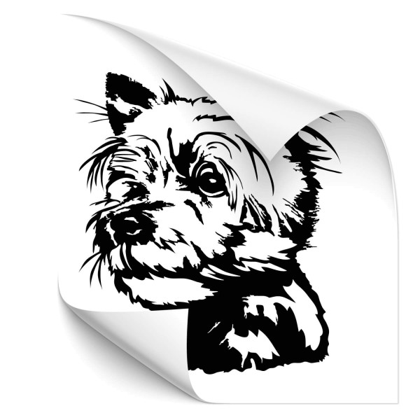 Yorkshire Terrier Car Tattoo - Hunde
