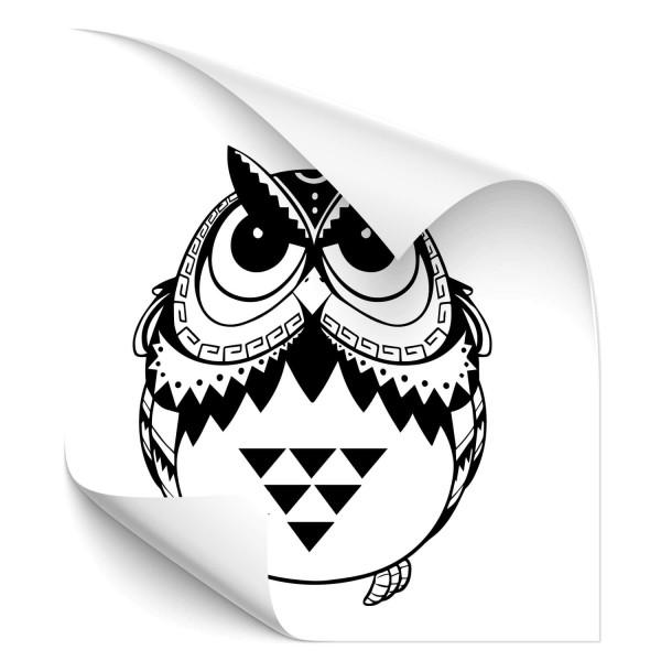 Eulen Fahrzeug Folien Sticker - Adler & weitere Vögel