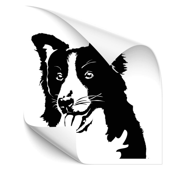 Border Collie Car Tattoo - Hunde