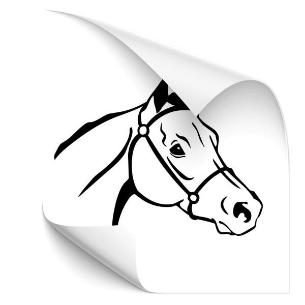 Pferde Autosticker - Kategorie Shop