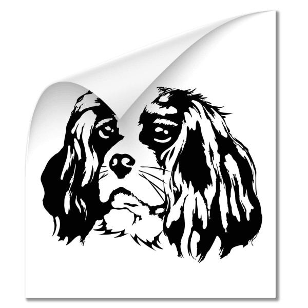 King Cavalier Auto Sticker - Hunde