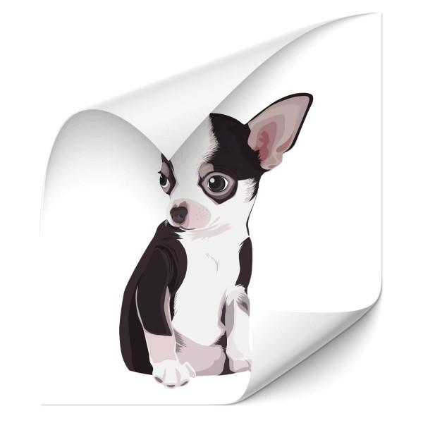 Chihuahua Auto Aufkleber - Kategorie Shop