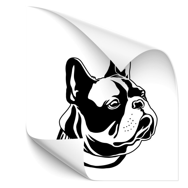 French Bulldog Car Tattoo - Kategorie Shop
