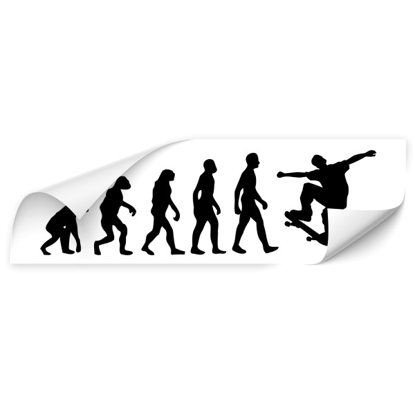 Evolution Auto Folienaufkleber - Sport