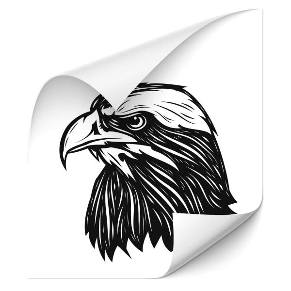 Adler Kopf Autotattoo - tiere