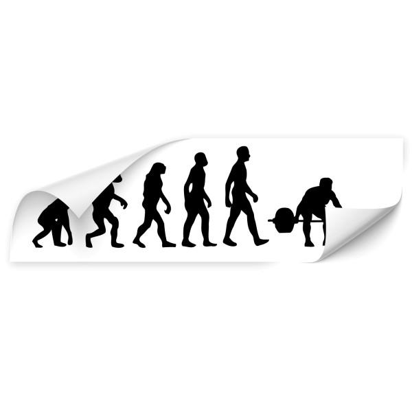 Evolution Kfz Folien Sticker - Sport
