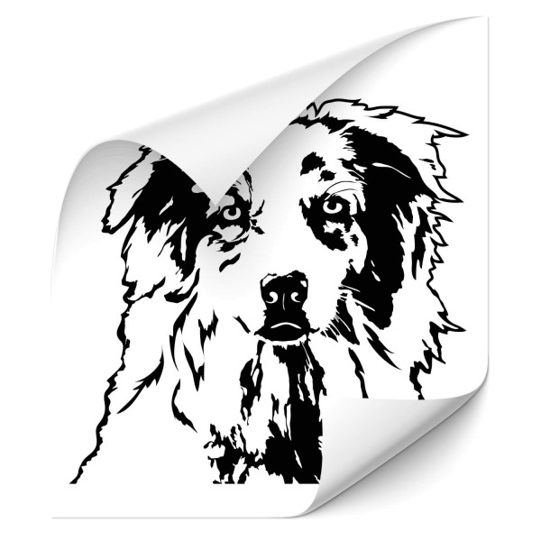 Australian Shepherd Heckscheiben Sticker - Hunde