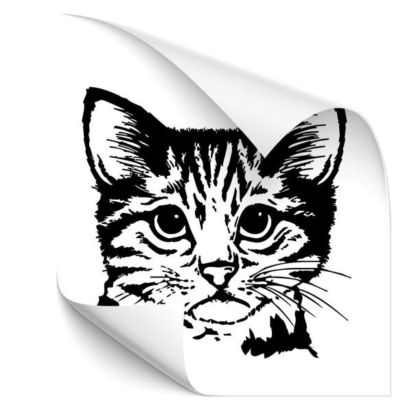 Katzen Autoaufkleber - Kategorie Shop