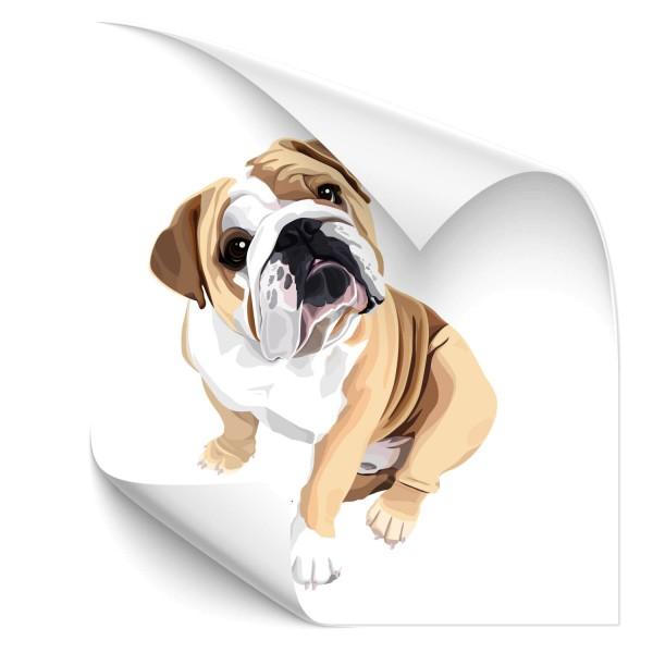 Bulldogge Heck Scheiben Aufkleber - Kategorie Shop
