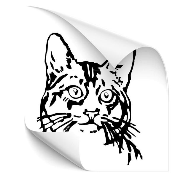 Katzenkopf Fahrzeug Sticker - katzen & Co