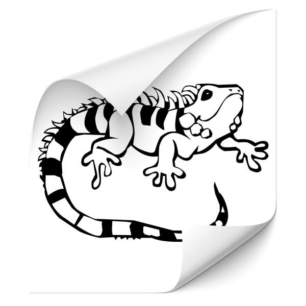 Leguan Car Foliensticker - gecko