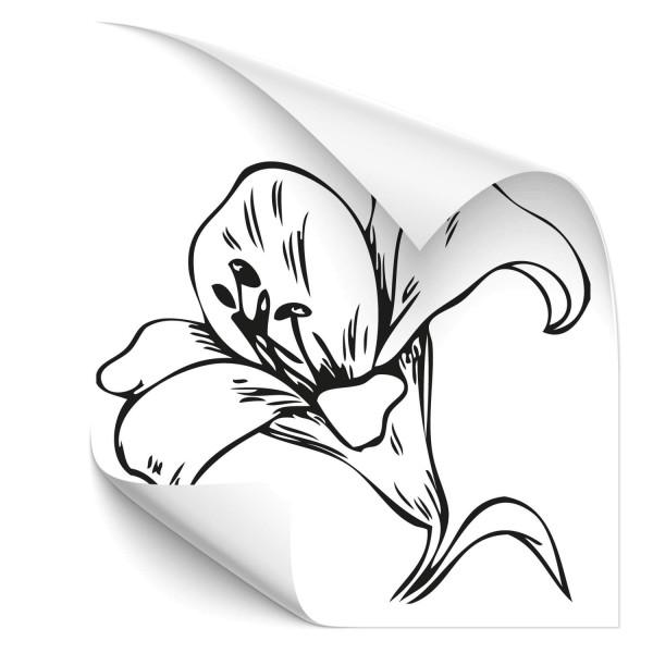 Lilien Blüte Fahrzeug Tattoo - Kategorie Shop