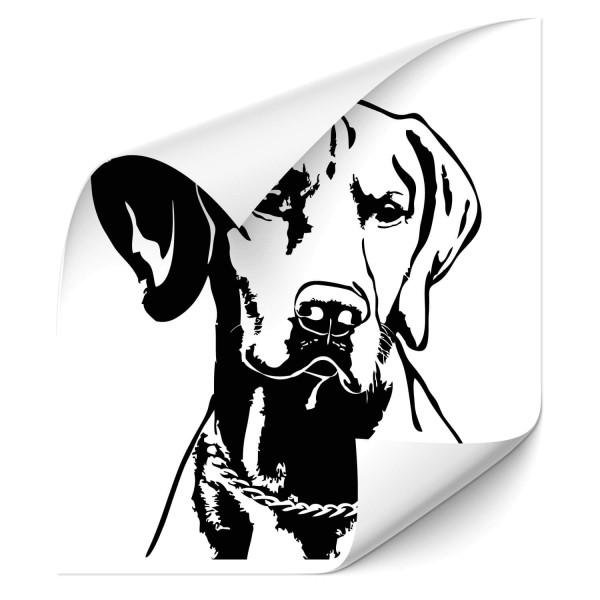 Vizsla Auto Aufkleber - Hunde